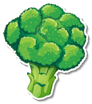Broccoli sticker on white background