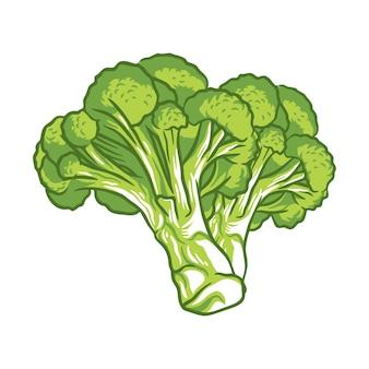 Брокколи овощи свежие фермы здоровая пища иллюстрация, изолированные на белом фоне