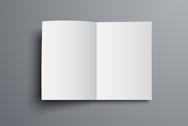 Brochure is a top view of the open first page. a blank of the universal catalog a4 or a5.