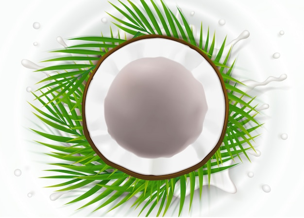 우유 얼룩에 부러진 된 코코넛