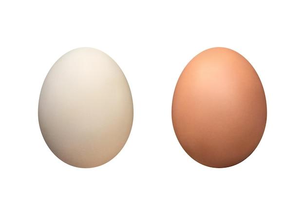 Коричневые и белые яйца изолированные векторные иллюстрации простой четкий гастрономический продукт пасхальный шаблон