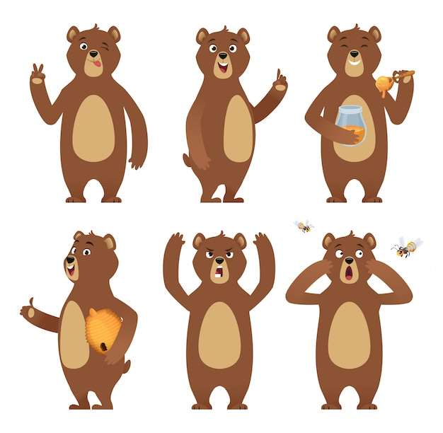 Brown bear cartoon. wild animal standing at different poses nature characters  collection