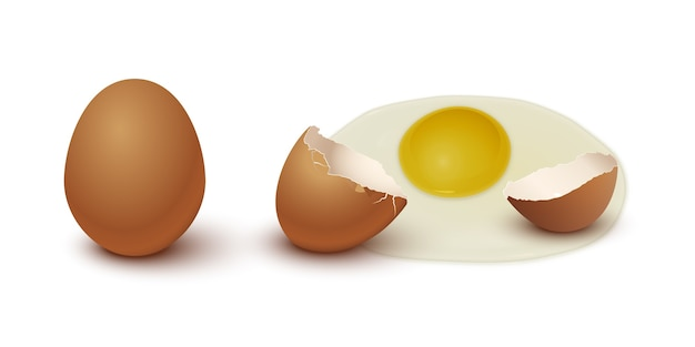 Brown chicken egg, eggshell and yolk isolated on gray background.