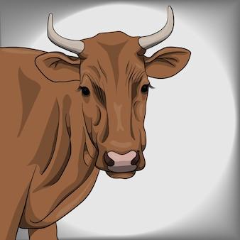 Коричневая корова иллюстрация и вектор