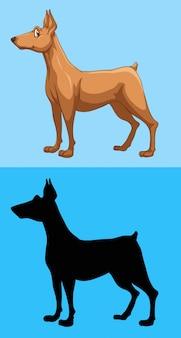 Brown dog on blue background