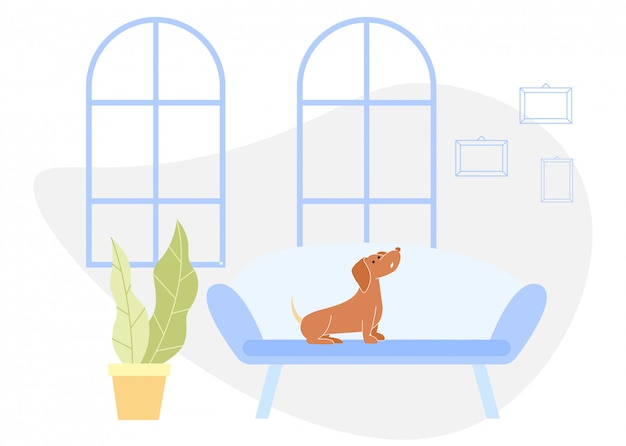 Brown dog sits on blue sofa in apartment. vector.