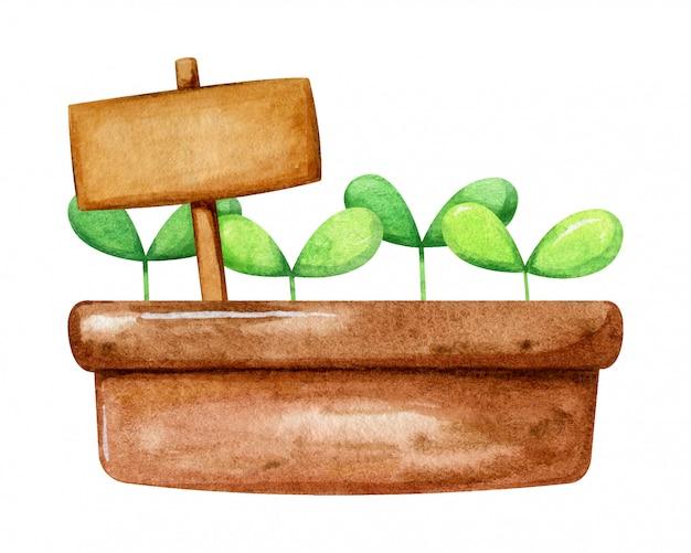 Коричневый горшок с милый маленький росток растет в нем и табличку для надписи. мультяшный рисованной стиль в акварели.