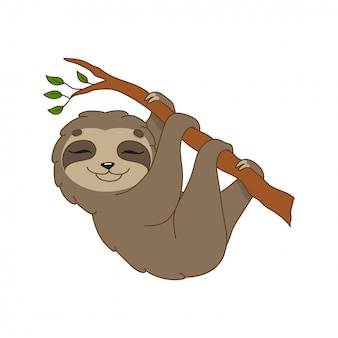 Brown sloth.