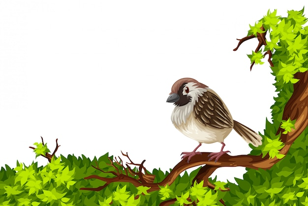 Brown sparrow on green branch