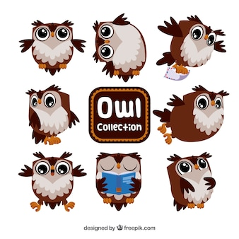 Brown and white cartoon owl set