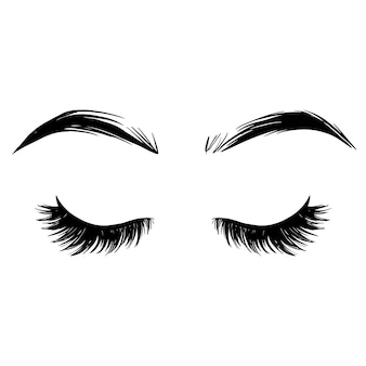 Brows and lashes  illustration. beautiful eyelashes.