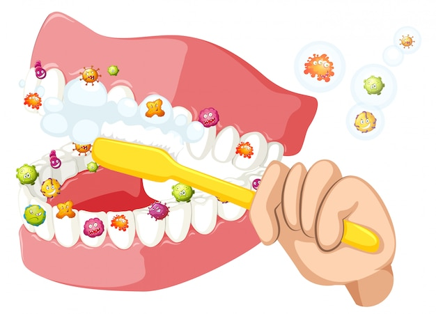 Brushing teeth and cleaning out bacterias