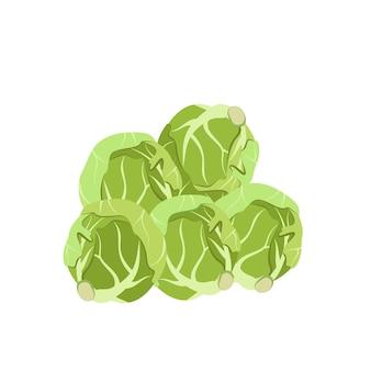 芽キャベツは、緑の野菜から作られた健康的な食事の天然物のためのアイコン食品を芽生えます