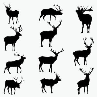 Buck silhouettes