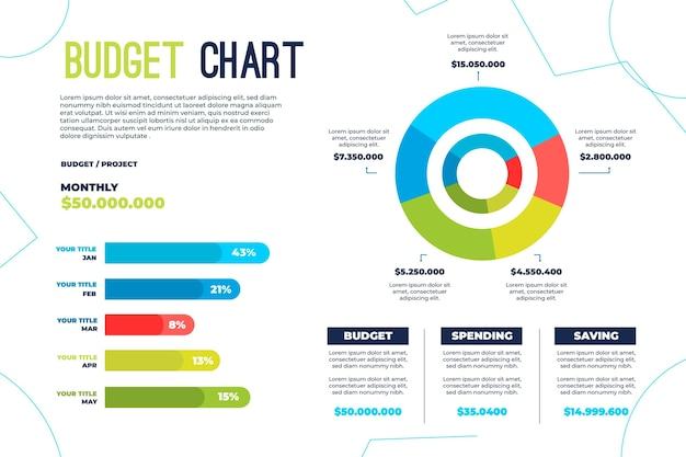 Budget infographic concept