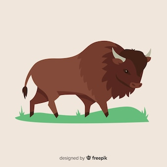 Buffalo draw illustration design