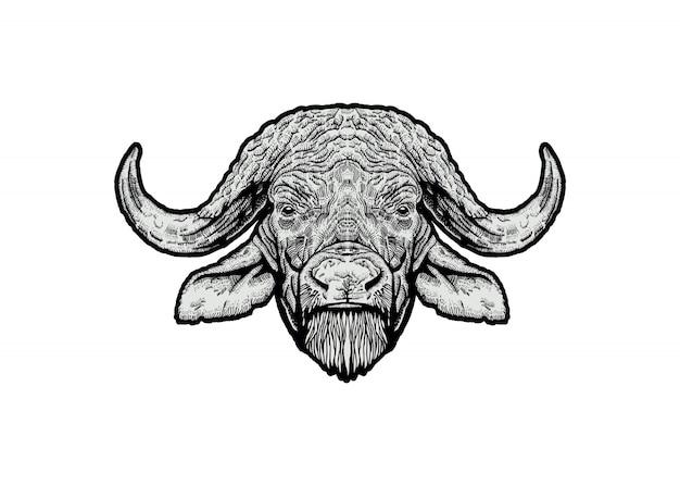 Buffalo head illustration