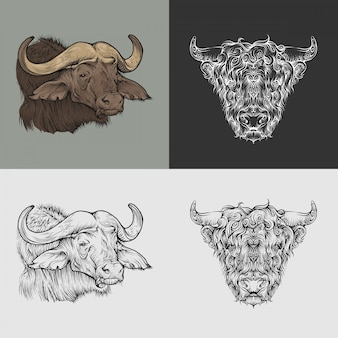 Buffalo heads from two different viewing angles