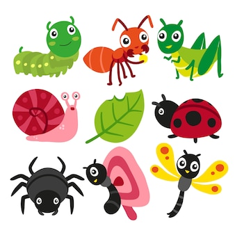 Bugs collection, insect vector design