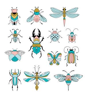 Bugs and insects, butterfly, ladybug, beetle, swallowtail, dragonfly collection