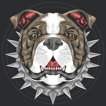 Bull dog pit bull