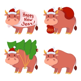 Bull with gifts, carries the christmas tree. year of the ox. happy cows set. new year and merry christmas illustration.