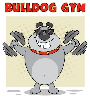 Bulldog cartoon mascot character with sunglasses working out with dumbbells.