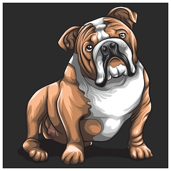 Bulldog cute concept cartoon design