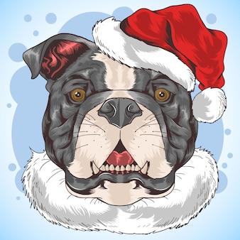 Bulldog pit bull dog santa claus