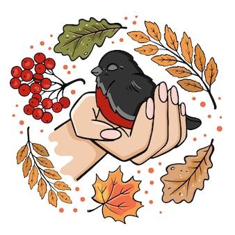 Снегирь в ладони осень птица осень природа сезон лес картинки векторные иллюстрации для печати