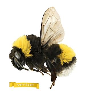 Bumblebee. 3d realistic