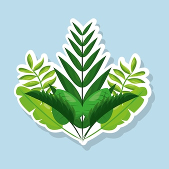 Bunch natural tropical leaves botanical card