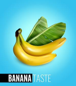 Bunch of ripe bananas with palm leaf advertising natural food taste realistic poster blue