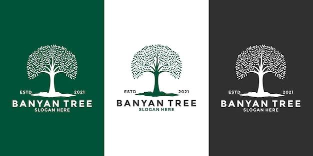 Bundle banyan tree logo design template vintage style