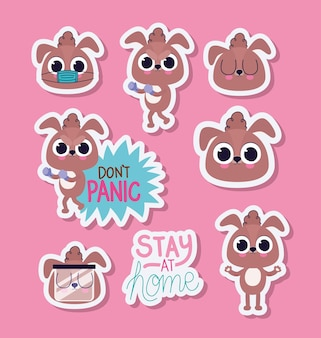 Bundle of cute puppys stickers on a pink background vector illustration design