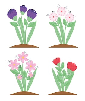 Bundle of four flowers and leafs spring season plants  illustration