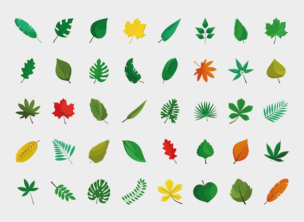Bundle of fourty leafs plants flat style icons