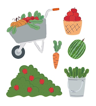 Bundle of fruits and vegetables farm products  illustration