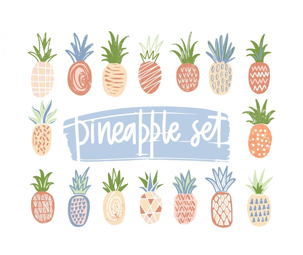 Bundle of hand drawn pineapples of different color and texture isolated on white background. set of exotic tropical fresh juicy fruits. colorful illustration in cartoon or doodle style.