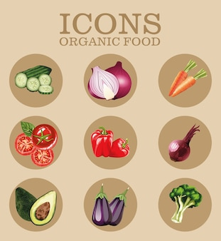 Bundle of nine fresh vegetables icons