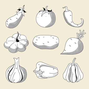Bundle of nine vegetables healthy food set icons