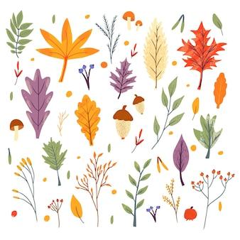 Связка осенних модных иконок. падающие листья дуба, клена, ягод и грибов. коллекция записок элементов осеннего сезона. плоские естественные векторные иллюстрации с цветочными для рекламы, продвижения
