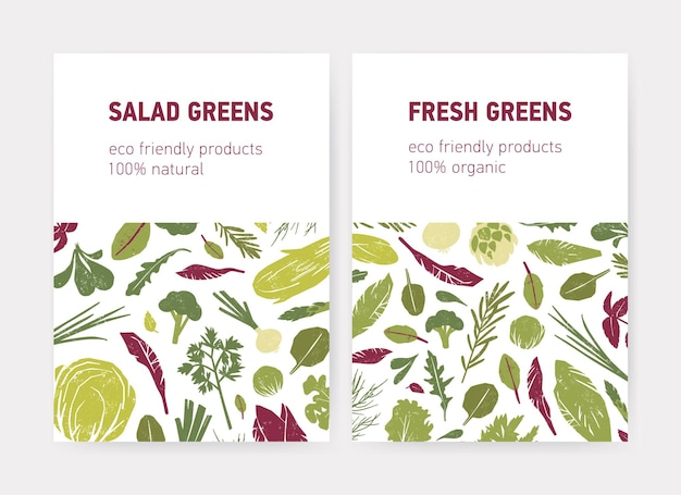 緑の野菜、新鮮なサラダの葉、スパイスハーブ、白い背景のテキストの場所とチラシやポスターテンプレートのバンドル。環境にやさしい製品広告のフラットベクトルイラスト。