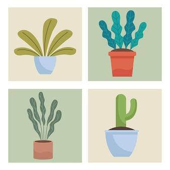Набор из четырех комнатных растений иллюстрации