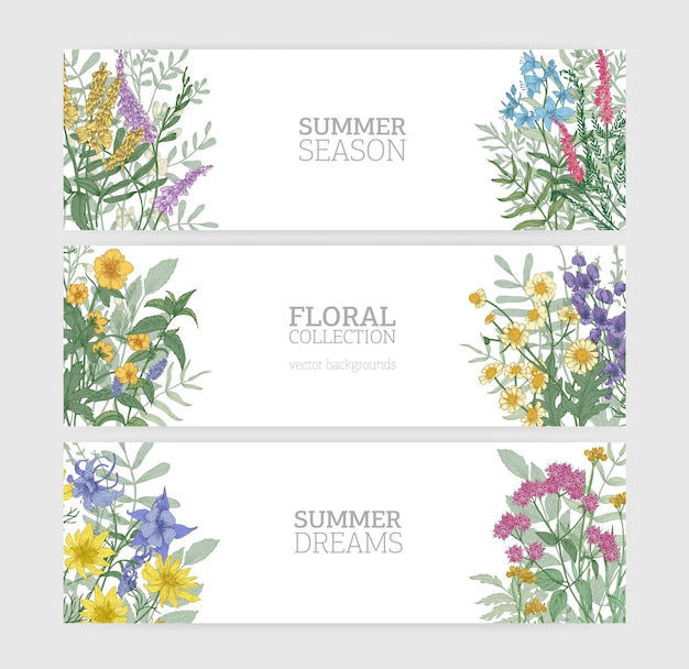 エレガントに咲く野生の夏の花と白い背景の上のテキストの場所と水平バナーテンプレートのバンドル。美しい花の背景のコレクション。カラフルな季節のベクトル図