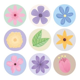 9つの花の束