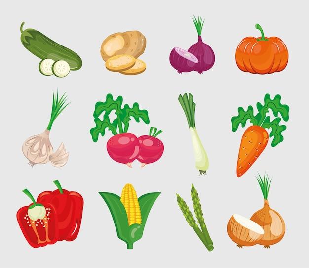 白い背景に設定された12の野菜の束。