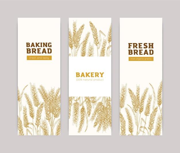 Пачка шаблонов вертикальных баннеров с колосьями пшеницы на белом фоне.