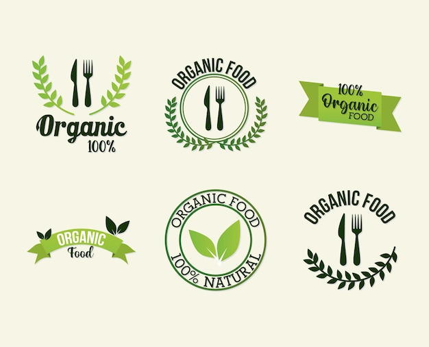 Bundle of organic food lettering on white
