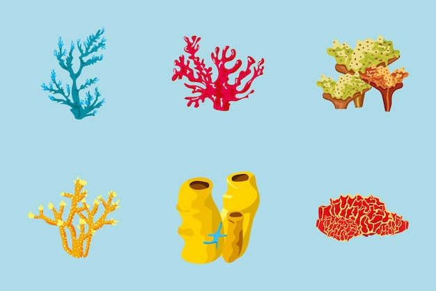 Bundle of six coral sea life nature elements illustration